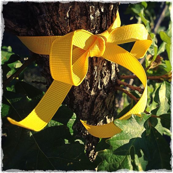 Yellow Ribbon Oak: