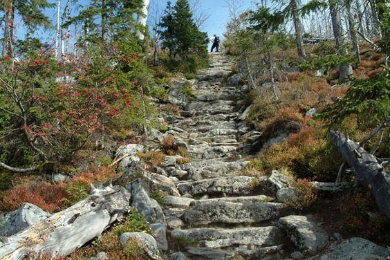 Bayerischer Wald - Himmelsleiter am Lusen