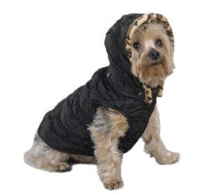 roupinhas de inverno para cachorros