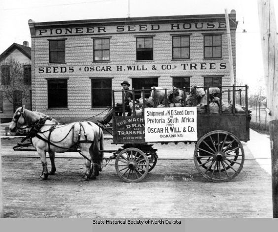 My great grandfather shipping his seed corn from Bismarck, ND to Pretoria, South Africa ... not by wagon the whole way :)