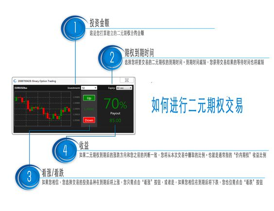 Chinese Infografic Binary Options