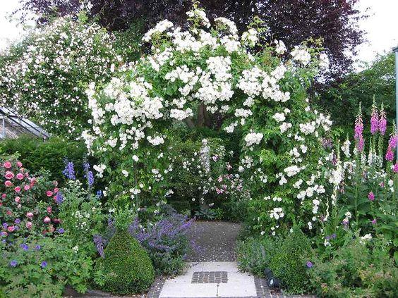 weiße Terrasse mit prächtigen Rosenbogen und Rambler Bobby James