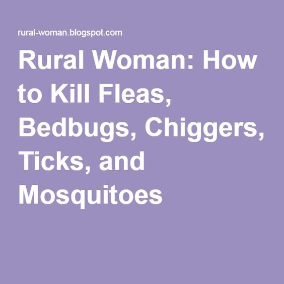 Mosquitoes Ticks And Fleas On Pinterest