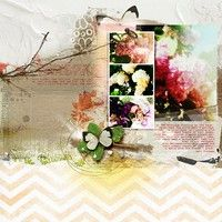 A Project by AmberR from our Scrapbooking Gallery originally submitted 05/14/12 at 09:24 AM