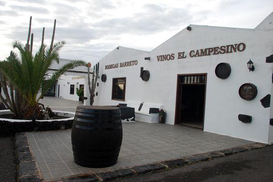 Zona vinicola di Lanzarote: La Geria