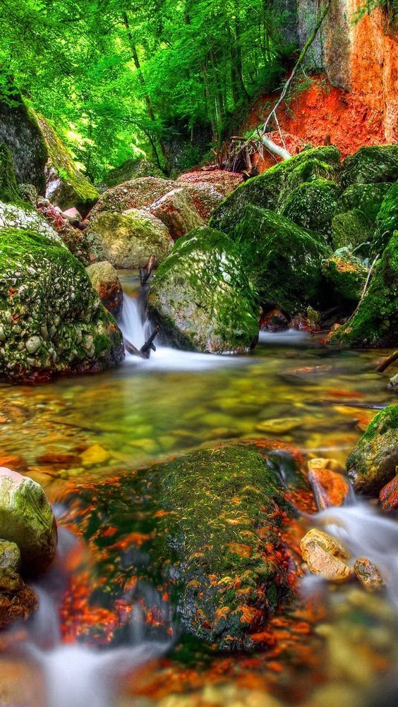 Nice Natural Beauty Beautiful Nature Nature Pictures Beautiful Landscapes