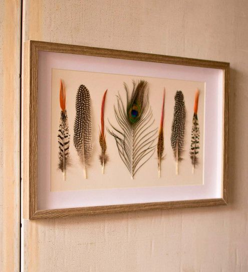 Framed Feathers Under Glass Wall Art Vivaterra Feather Wall Art Glass Wall Art Art Glass Pumpkin