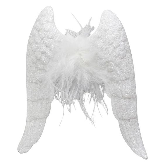 Plastic Feather Wings