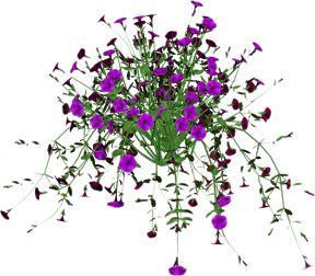 Gifs, imagens e efeitos: Tube-flores - 5
