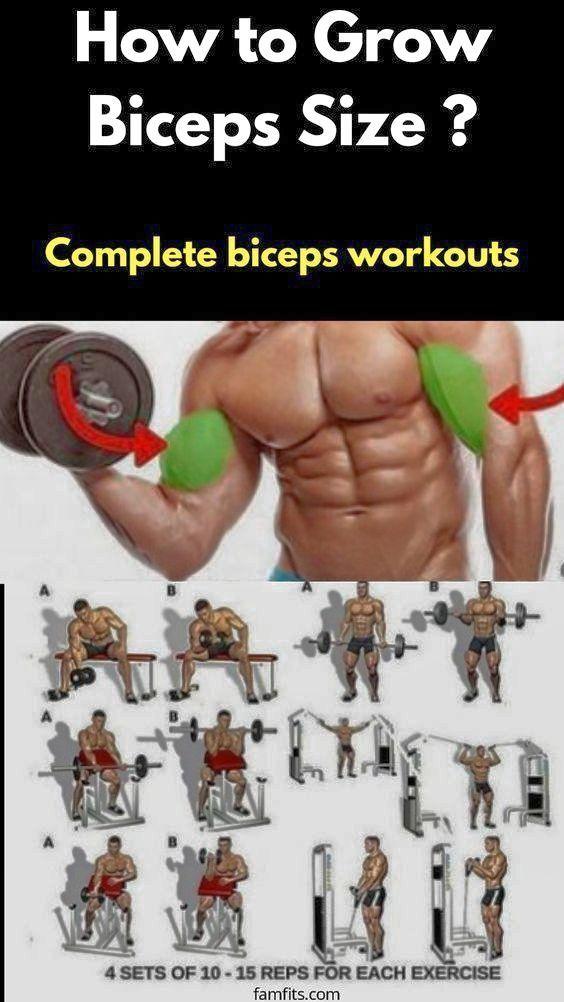 Pin On Biceps Workout