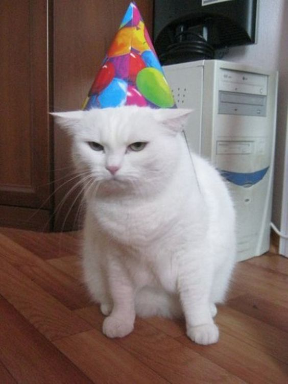ya quiero mi pastel