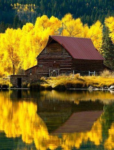 Google+ Autumn for Colorado