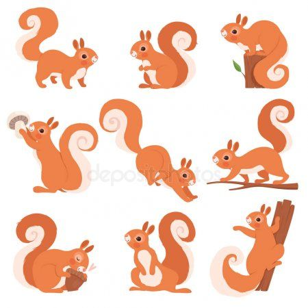 Cartoon Squirrel Funny Forest Wild Animals Running Standing And Jumping Vector Ad Forest Squirrel Illustration Forest Animals Illustration Squirrel Art