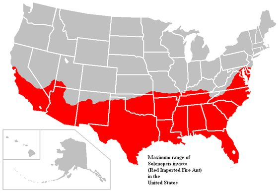 Fire Ant Range Map Slightly Enlarged Map This One Includes UT - Map of where fire ants are found in the us