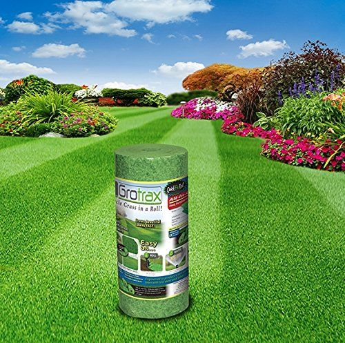 Grotrax Grass Review Grass Seed Mat Grass Seed Grass