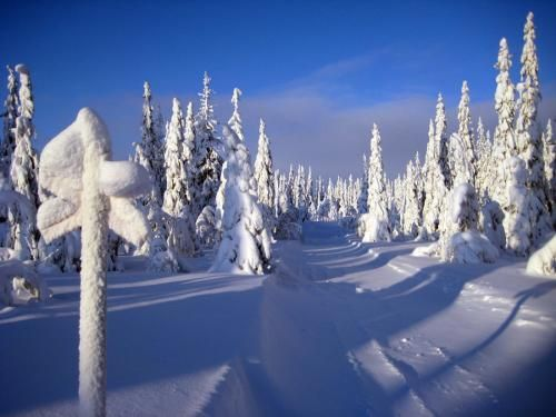 Swedish Laplands