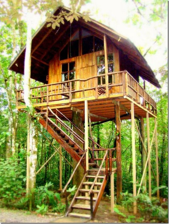 Treehouse hotel in Costa Rica.
