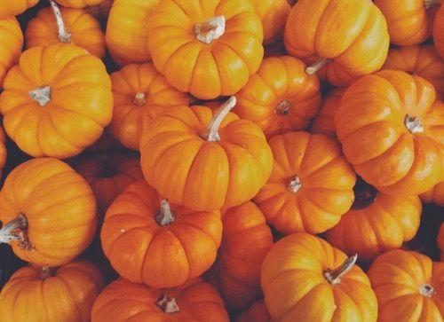 Pin By Gracie On Pumpkins Fall Computer Backgrounds Desktop Wallpaper Fall Fall Wallpaper