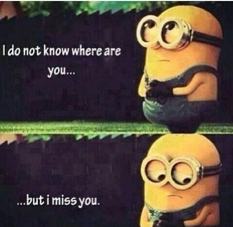Love the mimions, missing someone Quotes Pinterest