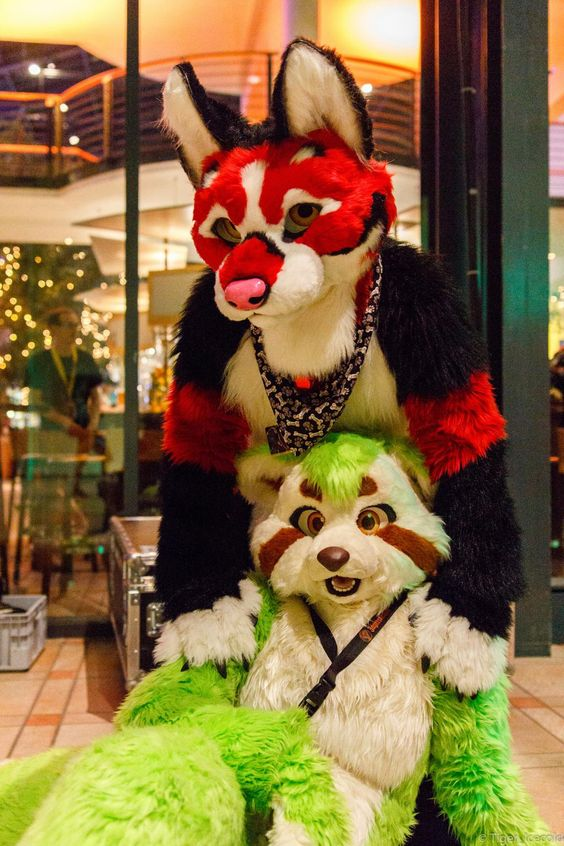 """fursuitpursuits: """" RT @KokaneeHusky: A shock between Green, Red… and Affection ! (@Wolftale and myself, photos by @Tiger_Icecold) http://t.co/FfM0BHWKpI (Source) """""""