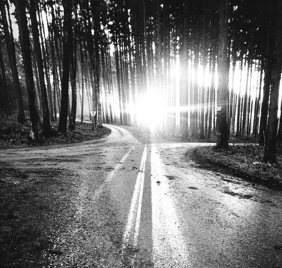 Mesmo que você leia muitas escrituras sagradas e mesmo que você fale muito sobre elas, o que de bom elas podem fazer por você se não agir sobre isto? O caminho não está no céu. O caminho está no coração - Buda, Osho e tantos outros que passaram pelos caminhos e deixaram rotas e anexos....
