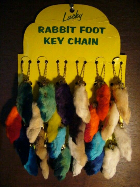 Rabbits foot...OMG I had several of these without conscience as a kid...now I know better.