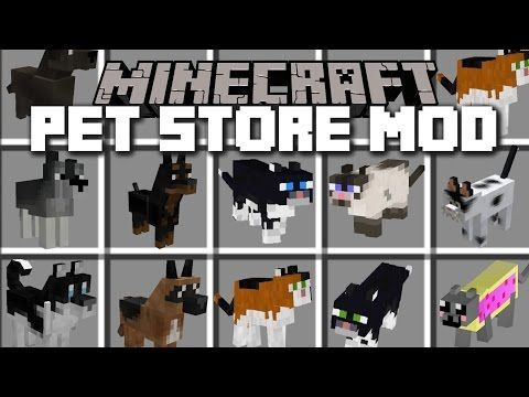 Minecraft Pet Store Mod Play With Hamsters Dogs And
