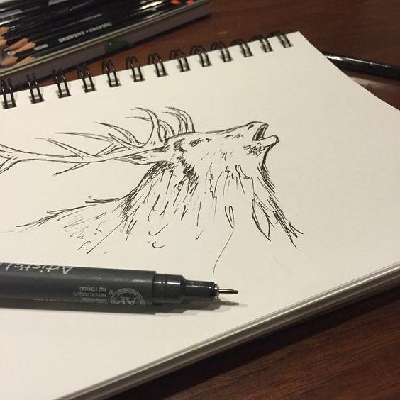 Elk  ink drawing