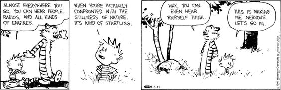 Calvin and Hobbes Comic Strip August 11 2015 on GoComics.com