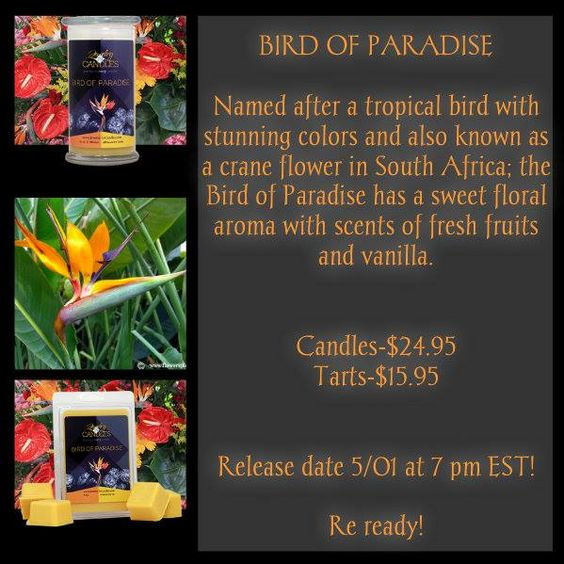Check out the new scent coming this week. Pick your jewelry and try one of these out!! Click pic to shop scents