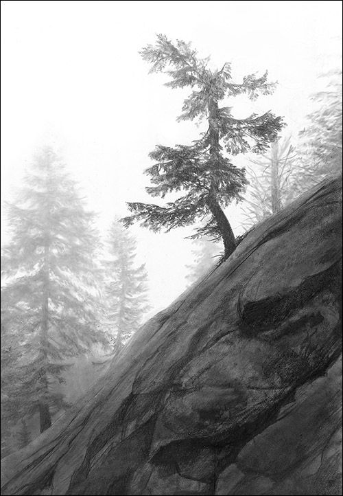 Photo Realistic Landscape Drawings In Graphite By Doug Fluckiger Landscape Pencil Drawings Landscape Sketch Landscape Drawings