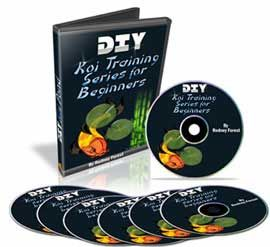 Do it yourself koi pond dvd video series for beginner 39 s for Do it yourself fish pond