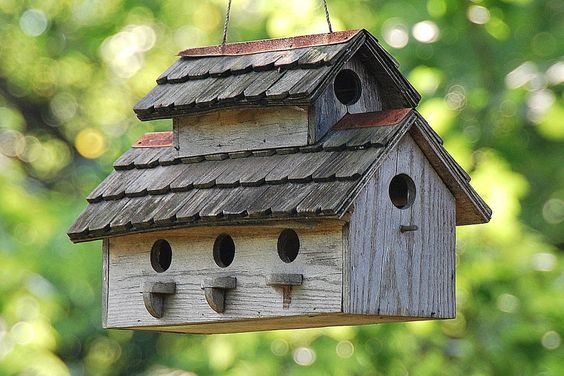 Tips for building bird houses, including what birds need to be attracted to a good, safe bird house.: