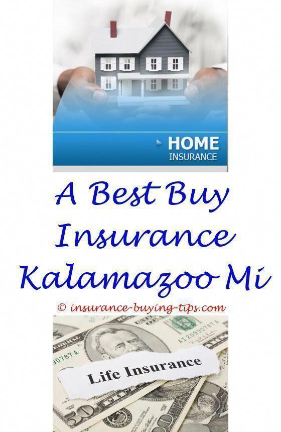 Buy Horse Insurance Online Buy Motor Insurance Online