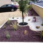 Photos on pinterest for Decoration parterre exterieur