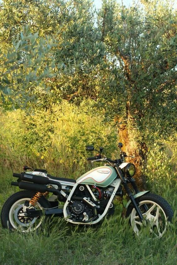 Redonda Motors And Ducati Indiana Scrambler Reiten