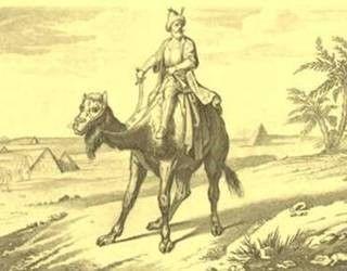Os cruzados perseguiram Saladino até a península do Sinai, sem conseguir capturá-lo.