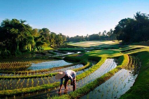 Nirwana golf course a scenic championship golf course minutes from Jabunami Villa #tanahlot #canggu #bali #golf #challenge