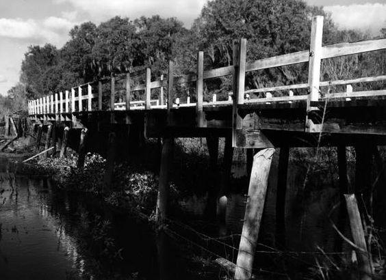 Bridge over the Hillsborough River - Temple Terrace, Florida 1954