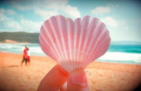 ハートの貝殻