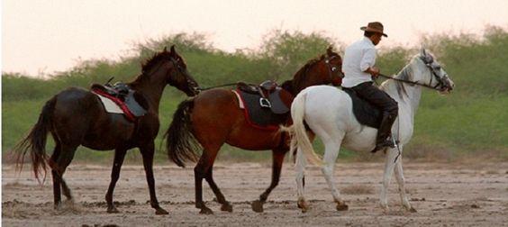 Randonnée à cheval au Gujarat
