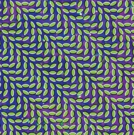 animal collective - merriweather post pavilion This is the best album cover ever