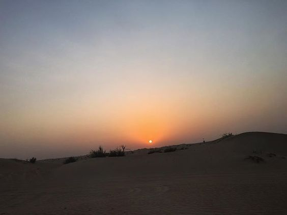 #travelaroundtheworld 🌏COUNTRY: DUBAI 📍PLACE: DESERT 🌿WEATHER: ☀️ ♥️CAPTION: GREAT SUNSET IN DESERT! . #littlegirltravel#travel#instamood#travelgram#instalife#escape#amazing#roadtrip#ukig#view#scenery#playhard#enjoy#f4f#l4f#instagood#life#adventure#world#landscape#instadaily#instamoment#love#destination#sky#dubai#uae#desert#safari
