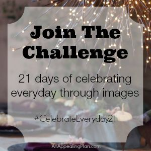 An Appealing Plan |  join the #instagram challenge | http://anappealingplan.com/celebrateeveryday21 | 21 days of celebrating life through images