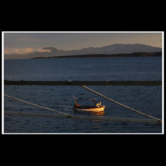 Igrane,  Sensimar Makarska, Croatia  #makarska #croatia #dog #fishing #boat #cost #adriatic #adriaticsea
