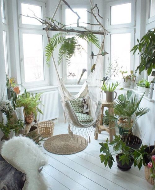 living space with a hammock surrounded with plants #gardenIdeas #garden #gardening #plants #homeDecor #indoor