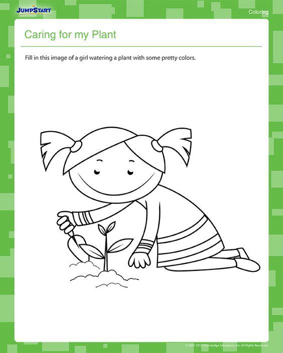 Plant Coloring Pages For Kindergarten : Kindergarten plant theme worksheets coloring
