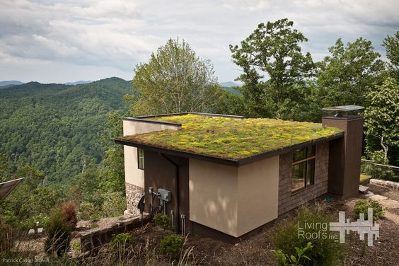 Two extensive green roofs were incorporated into the design of the house to minimize its impact visually and environmentally :: the home is not visible from a distance and is visually integrated into the site itself.  green roof installation provided by Living Roofs, Inc.