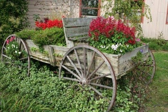 Rustic wagon of plants and flowers