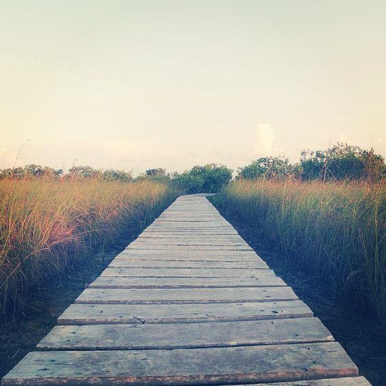 #rutas #caminos #routes #ways #dirección #sinfín #paisaje #sinprisas #iphoto #instaphoto